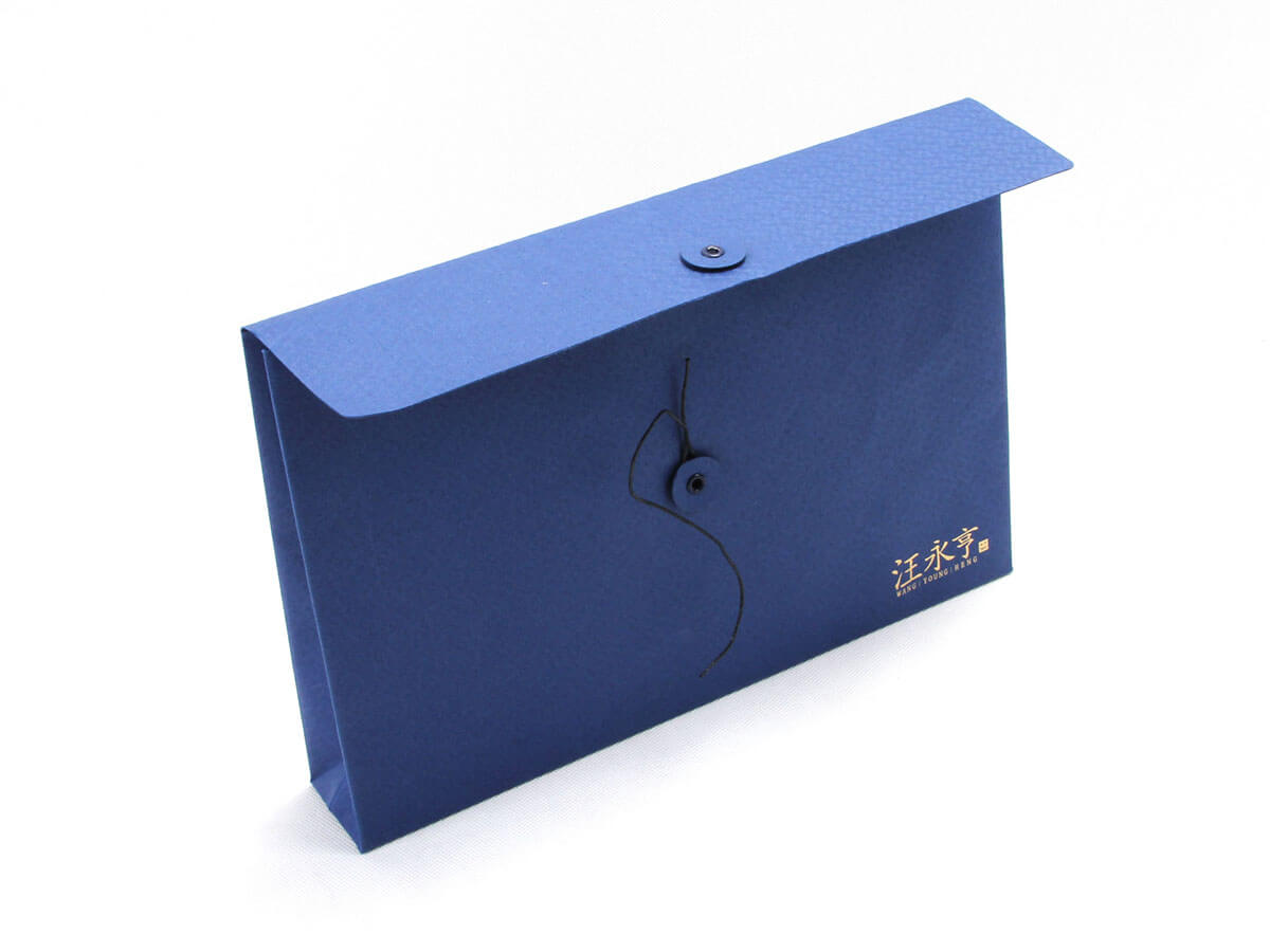 Century Brand Scarves Envelope Shopping Bags Back Detail