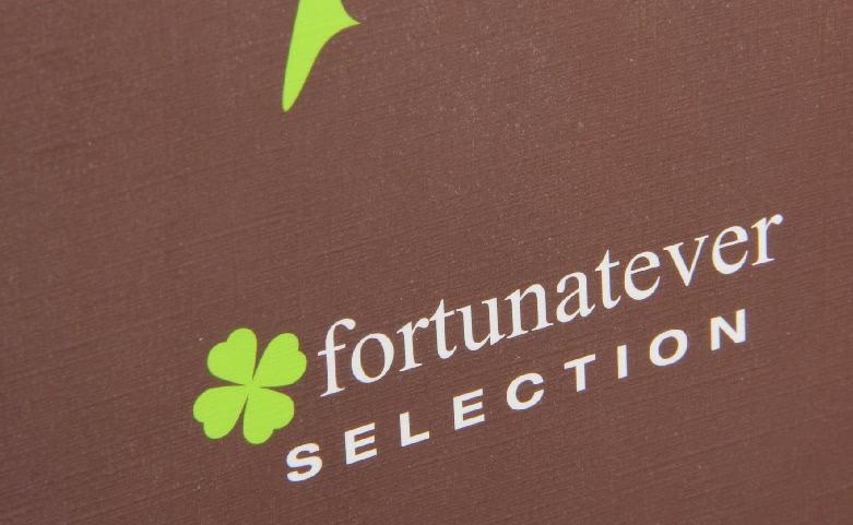 Rectangular Brown Fortunatever Necktie Boxes Logo