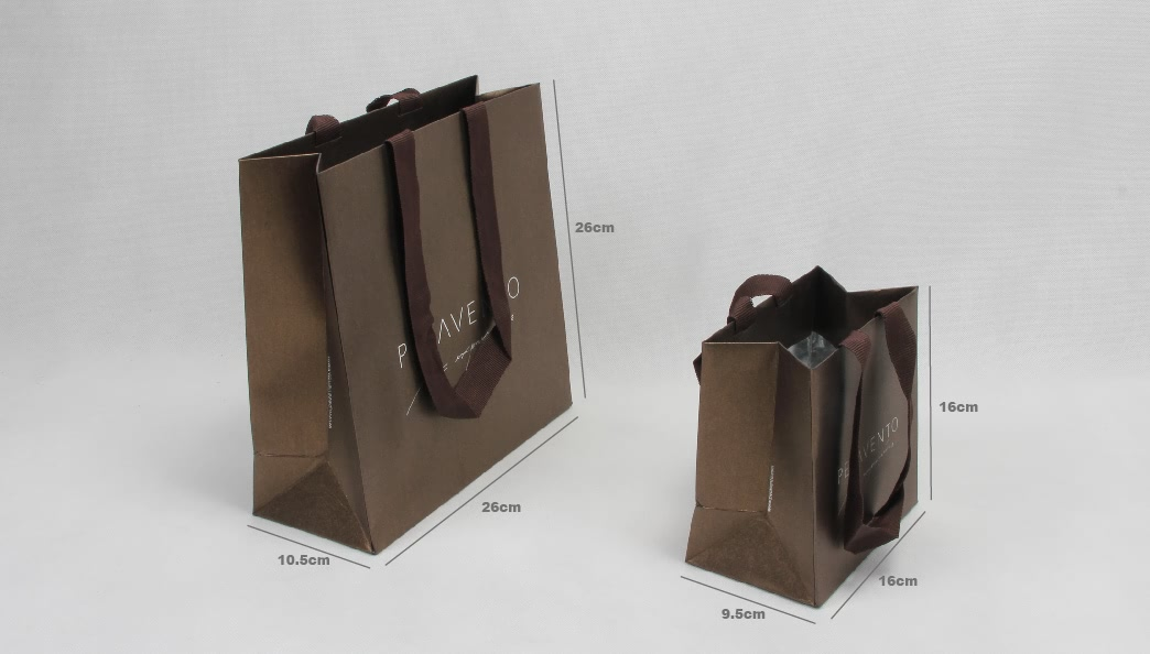 Fantastic Iridescent Garment Paper Bags Set size