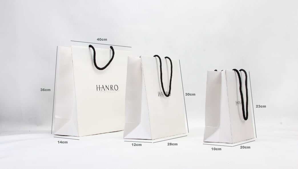 High End White Apparel Paper Bags Set size