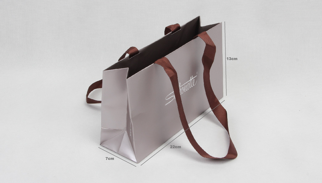 Luxury Gift Paper Bags With Long Handle size