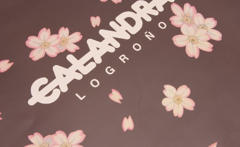 Flowers Garment Paper Bags Set With Pink Handles logo