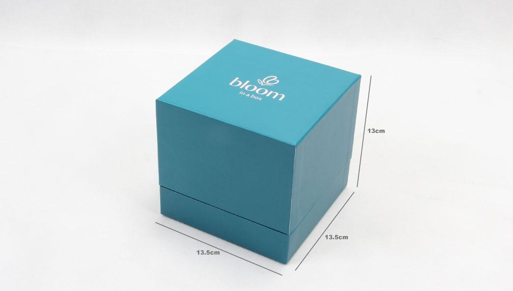 Turquoise Jewelry Bracelet Boxes size