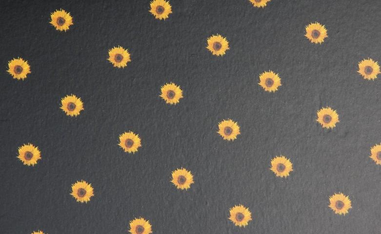 Sunflower Shirt Boxes print