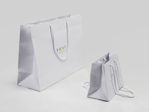 Laminated Matt Garment Paper Bags Set