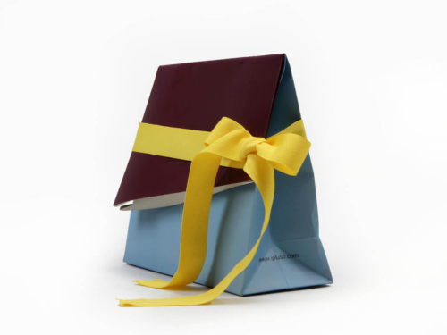 Premium Irregular Shaped Gift Paper Bags