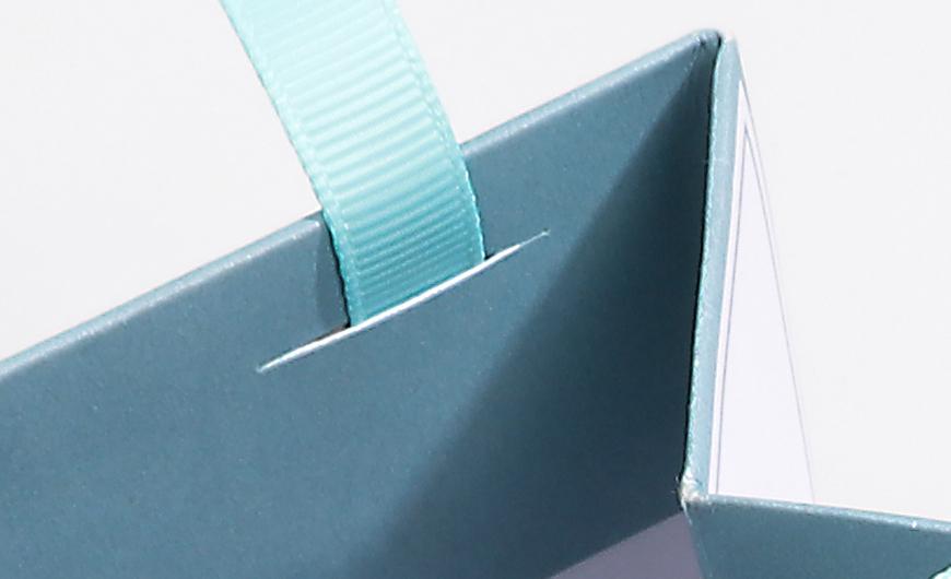 Natural Environment Shopping Bag Ribbons Material Detail